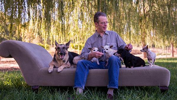 dog and cat behavior podcast